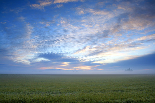 morning sky grass fog composite oregon sunrise fields willamettevalley canon1740f4l catchycolorsblue albanyoregon canon400d photoshopblend openareas
