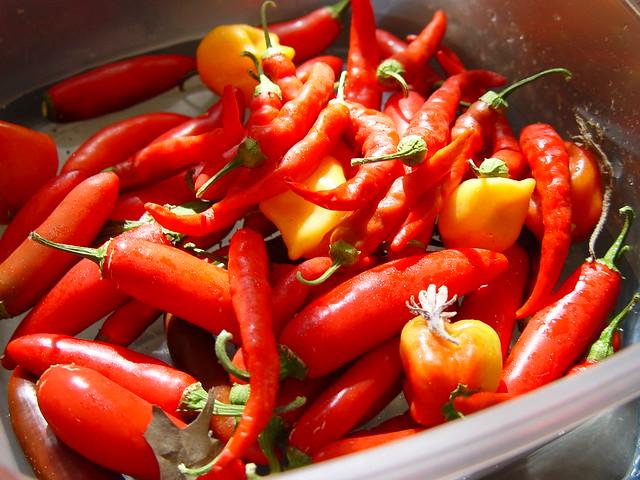 Whole Foods Habanero Hot Sauce