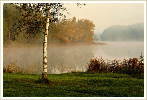 In the autumn morning