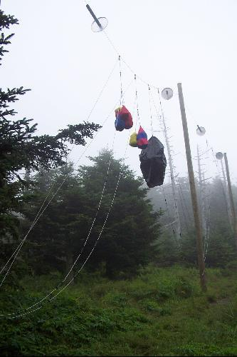 Camper's Food Bags Hung Out of Bear Reach