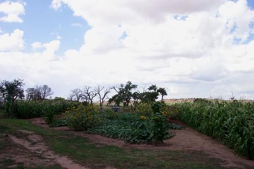 arizona navajoreservation hubbeltradingpost indiantradingpost historicalsite gandoaz