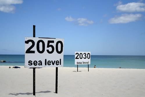 格林蘭島和南極冰原融化,將增加海平面上升的速度。(圖片來源:Julie G)