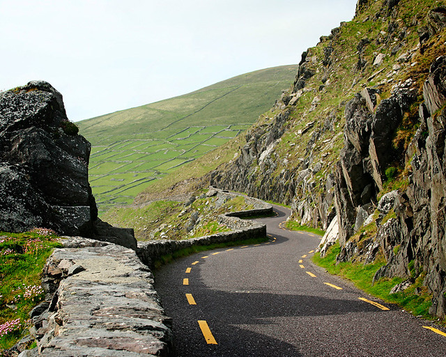 Curvy Road with Celtic Tiger