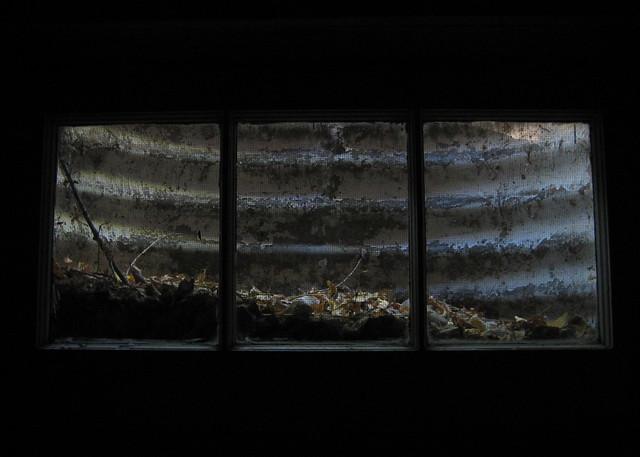 basement window 717 flickr photo sharing
