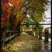 Small photo of Manayunk Autumn - Alternate Processing