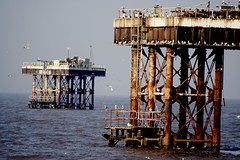 water, sea, petroleum, ocean, drilling rig, offshore drilling, pier, oil field, oil rig,