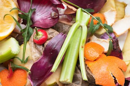 Compost bio bags