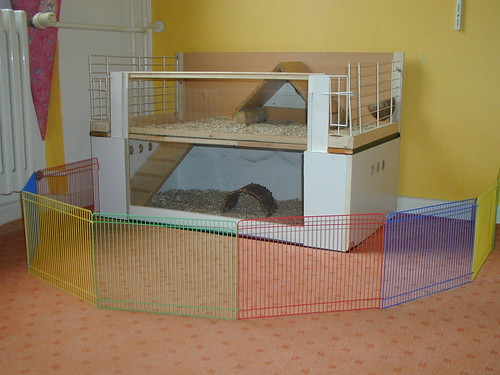 Homemade guinea pig cages for Diy guinea pig hutch