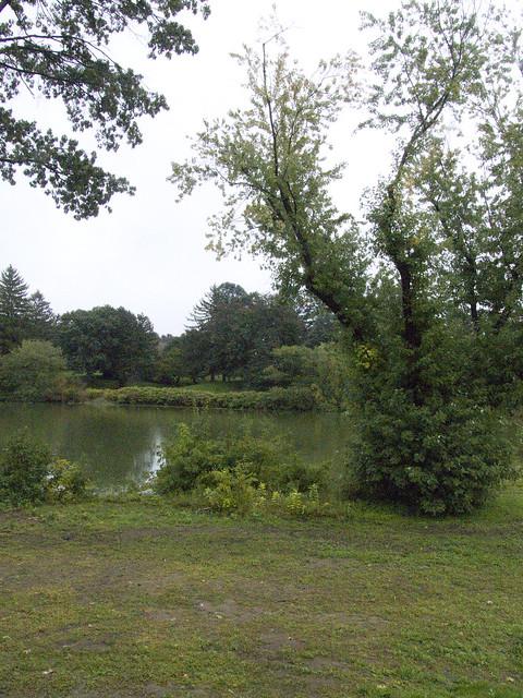 Roger Williams Botanical Garden 16 Flickr Photo Sharing