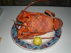 arthropod, shellfish, seafood, food,