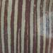 28983 Arisaema triphyllum by horticultural art