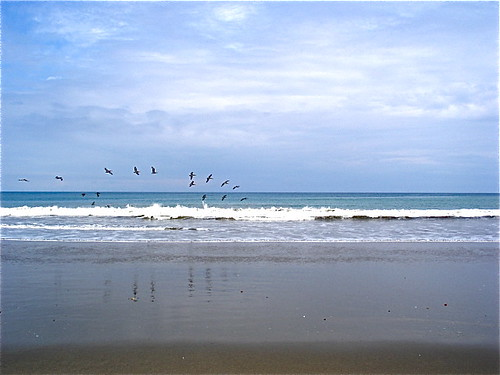Ecuador Beach Visit