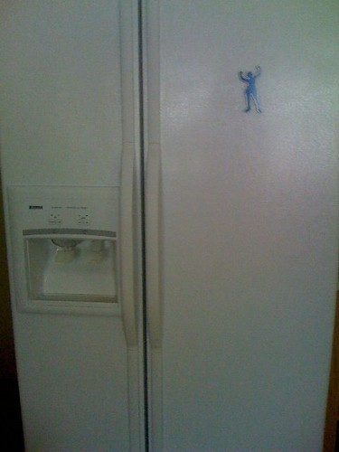 refrigerator magnet by tray