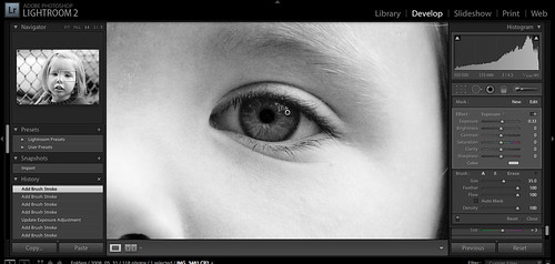 Lightroom 2.0 Allows Spot Processing