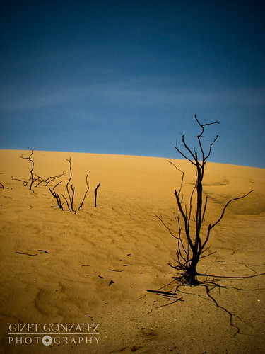 park parque sand desert venezuela arena explore national falcon desierto duna nacional soe 184 medanos coro flickrsbest