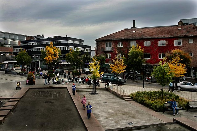 Asker Norway  City new picture : Asker, Norway in Autumn Colours | Larger view I've been thin ...