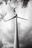 Windenergie in de Gentse zeehaven