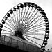 old photos - ferris wheel, chicago