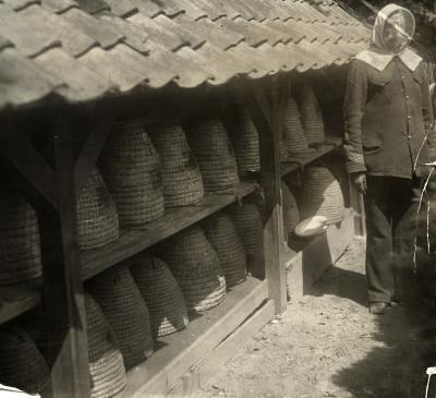 Bijenkorven bij tehuis Bronbeek voor oud-KNIL-militairen