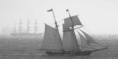 sail, sailboat, sailing ship, schooner, vehicle, ship, windjammer, full-rigged ship, mast, carrack, monochrome photography, lugger, galeas, barquentine, manila galleon, sloop-of-war, tall ship, watercraft, monochrome, black-and-white, boat, barque, brig, brigantine,