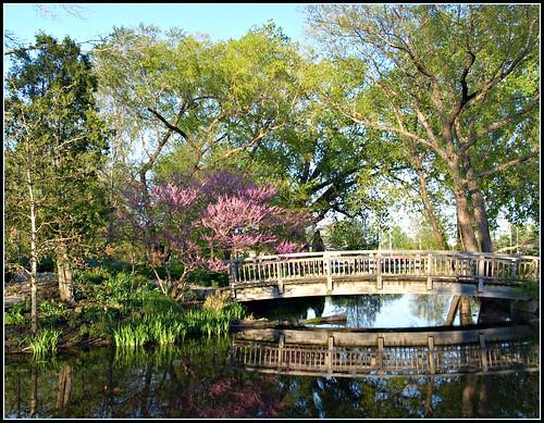 Spring Walk Through Olbrich Gardens