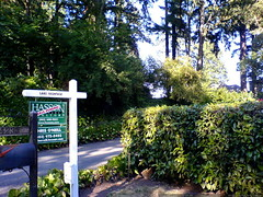 home for sale in lake oswego   DSC01392