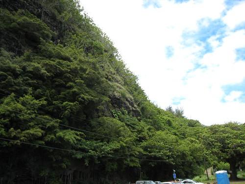 kauai IMG_5626