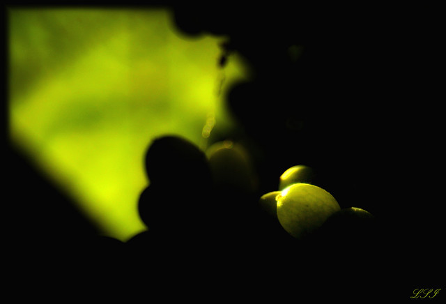 Juicy GREEN | Flickr - Photo Sharing!