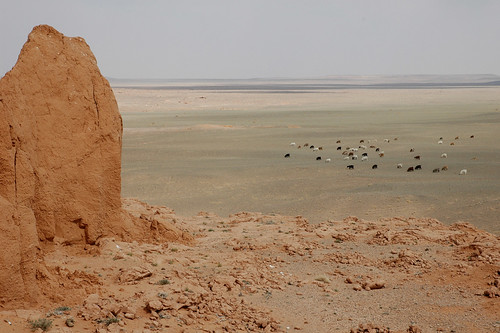 mongolia gobi flamingcliffs bayanzag dalanzadgad umnugovi omnogovi