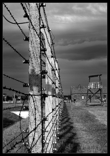 Barbed wire fence holocaust related keywords