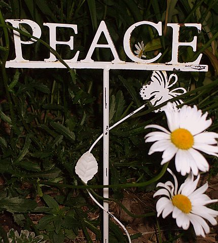 peace and daisy