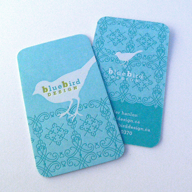 Bluebird Thiết kế BC
