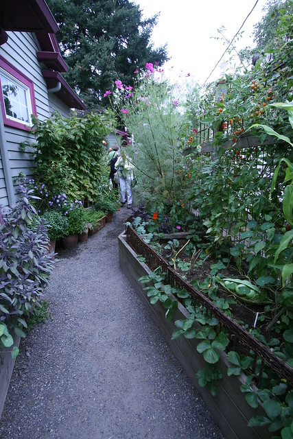Kitchen garden at Bloomtown garden in Portland | Flickr ...