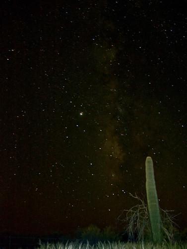 arizona cactus sky cloud grass night landscape star d70s sagittarius nativeamerican teapot saguaro constellation reservation darksky milkyway 165 blacksky 18200mmvr coronaaustralis tohonoo'odhamnation ajohighway southerncrown