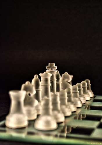 white black glass king pieces board chess queen knight rook bishop pawn d80