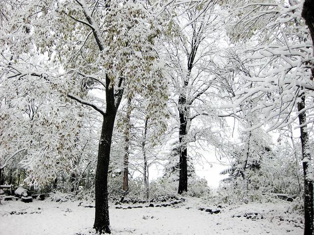 Minnesota Morning