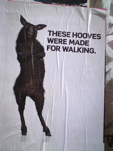poster in the city of Amsterdam: THESE HOOVES WERE MADE FOR WALKING