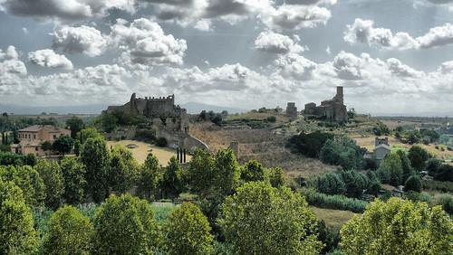 Tuscania 7