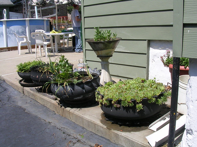 Awesome planters made from old tires flickr photo sharing - Planters made from old tires ...