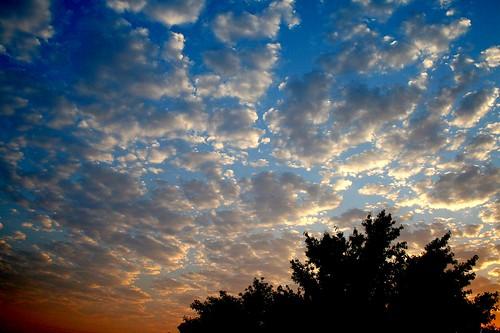 color silhouette clouds sunrise canon landscape desert kitlens universe picnik irfanview naturesfinest supershot canonefs1855mmf3556 xti 400d canon400d ourplanet systèmesolaire photofaceoffwinner pfogold freewarephotoeditors