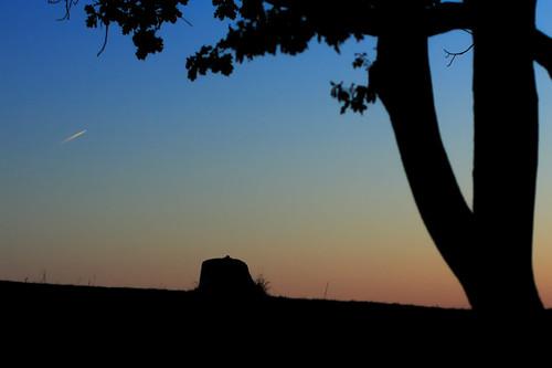 sky tree nature sunrise airplane landscape massachusetts jet canon350d mound canonrebelxt worcester greenhillpark canonef50mmf14usm canon50mmf14