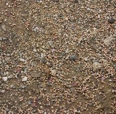 floor(0.0), asphalt(0.0), granite(0.0), road surface(0.0), flooring(0.0), soil(1.0), sand(1.0), pebble(1.0), rock(1.0), gravel(1.0),