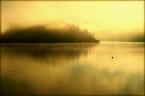 morning mist fog forest sunrise reflections golden poland calm angels waterscapes małopolska naturesfinest czorsztynlake canoneos30d zalewczorsztyński pieninynationalpark atqueartificia alwaysexc lesamisdupetitprince niedzicazamek sensationalphoto beakoteckaphotography miasbest