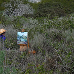 Barbara Rosenthal Painting in the Elfin Forest in Los Osos, CA 08 March 2008 2 of 4