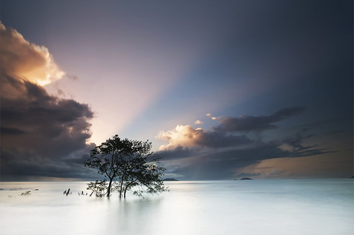 longexposure sea cloud sun mer tree beach rain sunrise landscape dawn bravo bourda cayenne shore erick paysage arbre sunray guyane 973 frenchguiana canonef1740mmf4l guyanefrançaise infinestyle megashot 97300 loitiere erickloitière singhrayreversedgnd darylbensonfilters lee105mmpolarizer ricoliki explore146thankyou