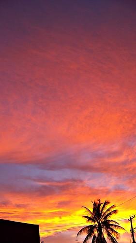 sunset naturaleza atardecer chiapas julio2008