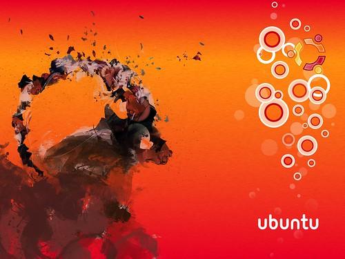 Fonds d 39 crans ubuntu intrepid ibex personnels for Photo ecran ubuntu