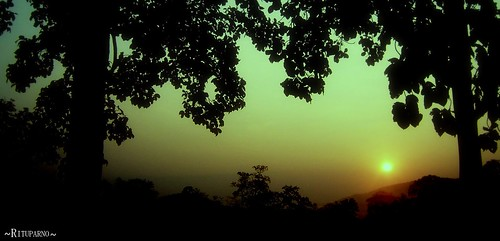 winter sky cloud sun sunlight india tree beautiful yellow sunrise golden leaf ray seasons hill sunsets frosty assam sivasagar sibsagar dutta supershot rituparno abigfave aplusphoto rituparnaa