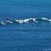 Groupe de Surfeurs ©  Office de Tourisme de Guéthary