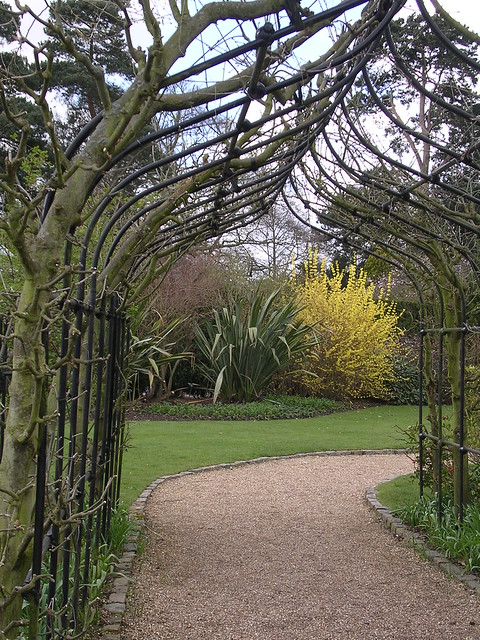 Arch towards nature.